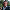 Murat Ekinci